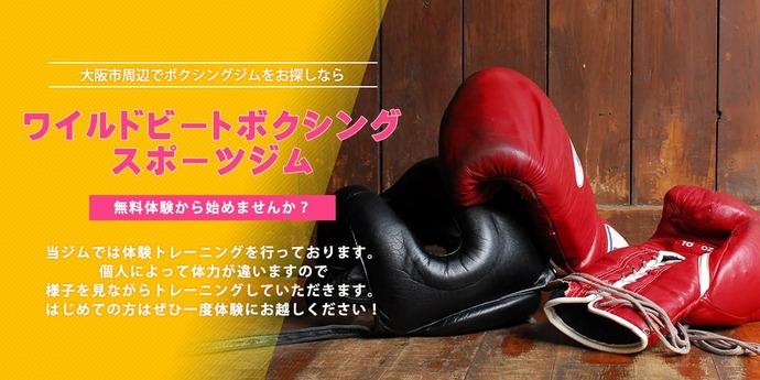 ボクシング体験コースがあり大阪市から通うことのできるボクシングジム